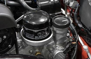 Picture for category Oil Filters